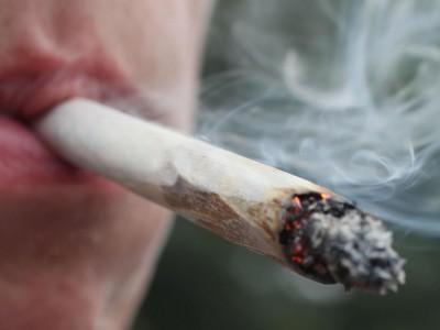 cannabis (1)